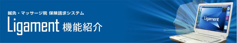 鍼灸・マッサージ院 保険請求システム Ligament機能紹介